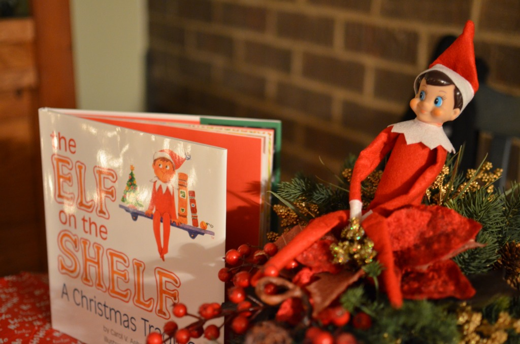 Elf on a Shelf by Michael Kappel