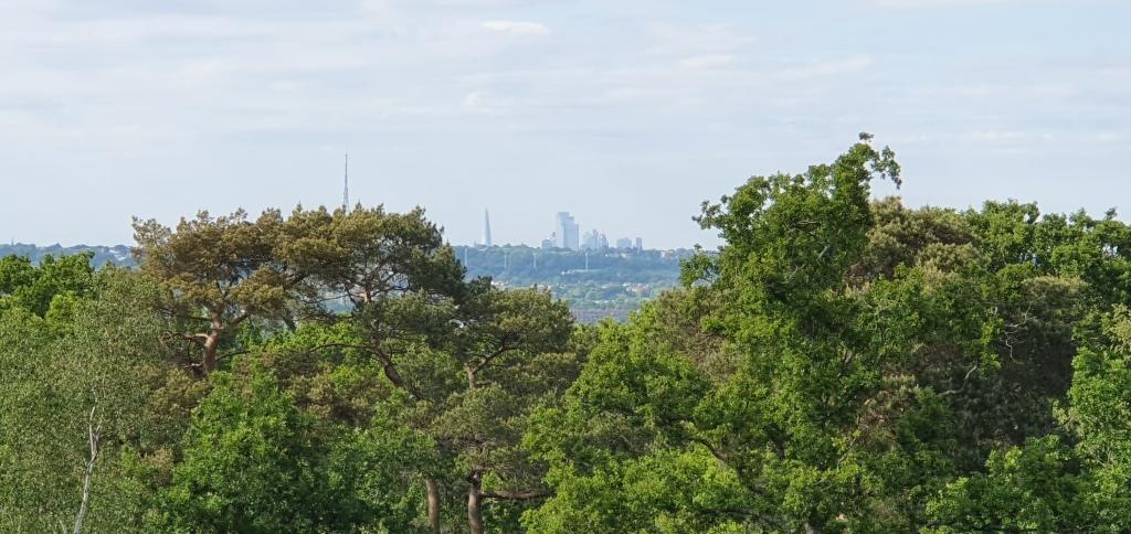 View from Addington Hills