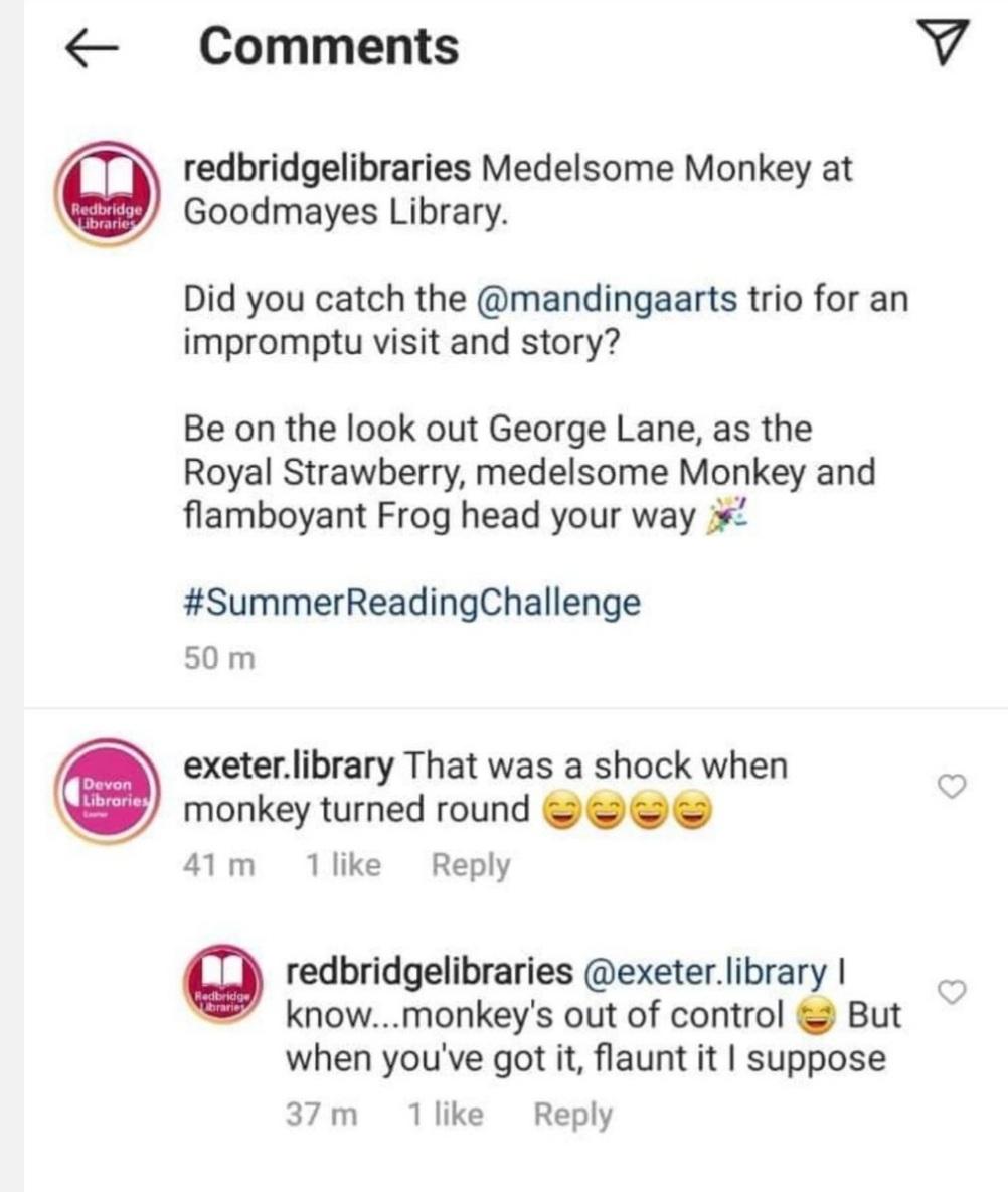 Medelsome Monkey social media posts